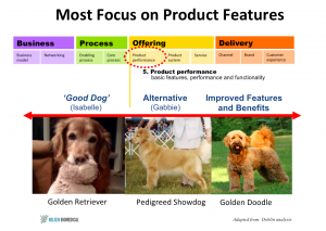 Most Businesses Focus on Product Innovation